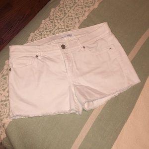 LOFT white denim shorts. Never worn.